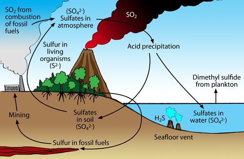diagram of the sulfur cycle sulfur 1 easy diagram of the nitrogen cycle