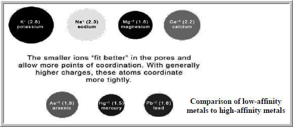 zeolite compasison metal sizes